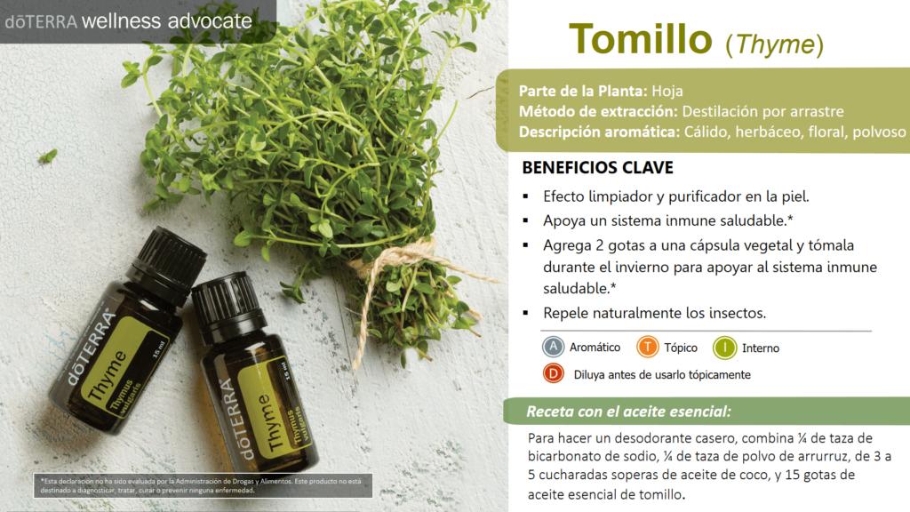 El aceite esencial de Tomillo