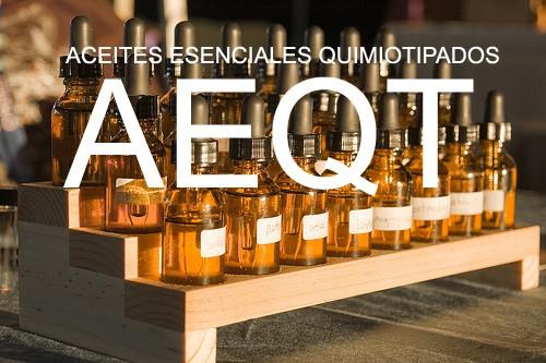 El quimiotipo de cada aceite esencial